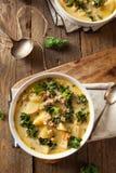 Σπιτική θερμή κρεμώδης Tuscan σούπα στοκ φωτογραφίες