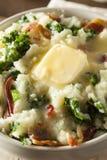 Σπιτική ιρλανδική πατάτα Colcannon Στοκ εικόνες με δικαίωμα ελεύθερης χρήσης
