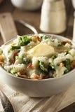 Σπιτική ιρλανδική πατάτα Colcannon Στοκ φωτογραφίες με δικαίωμα ελεύθερης χρήσης