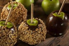 Σπιτική καραμέλα Taffy Apple με τα φυστίκια Στοκ Εικόνες