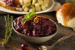 Σπιτική κόκκινη σάλτσα των βακκίνιων Στοκ Εικόνες