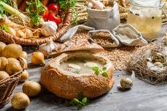Σπιτική ξινή σούπα στο ψωμί με τη μαντζουράνα Στοκ φωτογραφία με δικαίωμα ελεύθερης χρήσης