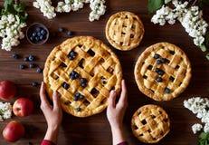 Σπιτική οργανική πίτα μήλων έτοιμη να φάει σκοτεινό σε ξύλινο Παραδοσιακό επιδόρπιο στη ημέρα της ανεξαρτησίας Το επίπεδο τροφίμω Στοκ εικόνες με δικαίωμα ελεύθερης χρήσης