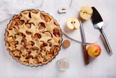 Σπιτική πίτα μήλων με τα τα βακκίνια και την κανέλα στοκ φωτογραφίες με δικαίωμα ελεύθερης χρήσης