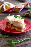Σπιτική πίτα με τα σύκα και τη μαρέγκα Στοκ φωτογραφία με δικαίωμα ελεύθερης χρήσης