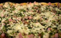 Σπιτική πίτσα στοκ εικόνα με δικαίωμα ελεύθερης χρήσης