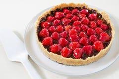 Σπιτική παρακμιακή φράουλα σοκολάτας ξινή Στοκ φωτογραφίες με δικαίωμα ελεύθερης χρήσης