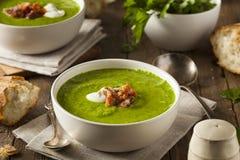 Σπιτική πράσινη σούπα μπιζελιών ανοίξεων στοκ φωτογραφίες