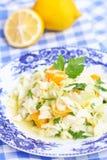 Σπιτική σαλάτα με το λάχανο και το πορτοκάλι στοκ εικόνες