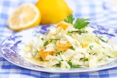 Σπιτική σαλάτα με το λάχανο και το πορτοκάλι στοκ φωτογραφίες με δικαίωμα ελεύθερης χρήσης
