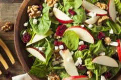 Σπιτική σαλάτα σπανακιού ξύλων καρυδιάς της Apple φθινοπώρου Στοκ Εικόνες