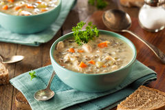 Σπιτική σούπα άγριου ρυζιού και κοτόπουλου Στοκ Φωτογραφία