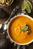 Σπιτική σούπα κολοκύνθης Butternut φθινοπώρου Στοκ Εικόνα