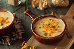 Σπιτική σούπα τυριών μπύρας Στοκ Εικόνα