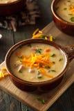 Σπιτική σούπα τυριών μπύρας Στοκ Εικόνες