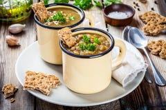Σπιτική σούπα φακών με το παξιμάδι και το μαϊντανό στοκ φωτογραφίες με δικαίωμα ελεύθερης χρήσης