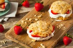 Σπιτική φράουλα shortcake με την κτυπημένη κρέμα Στοκ Φωτογραφίες