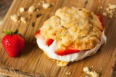 Σπιτική φράουλα shortcake με την κτυπημένη κρέμα Στοκ Εικόνες