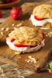 Σπιτική φράουλα shortcake με την κτυπημένη κρέμα Στοκ φωτογραφίες με δικαίωμα ελεύθερης χρήσης