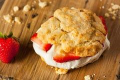 Σπιτική φράουλα shortcake με την κτυπημένη κρέμα Στοκ εικόνα με δικαίωμα ελεύθερης χρήσης