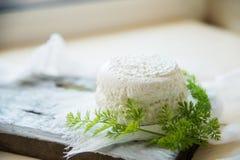 Σπιτική φρυγανιά παξιμαδιών με το τυρί εξοχικών σπιτιών και μαϊντανός στο άσπρο ξύλινο υπόβαθρο πινάκων Στοκ εικόνες με δικαίωμα ελεύθερης χρήσης