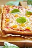 Σπιτική χορτοφάγος πίτσα Στοκ Εικόνες
