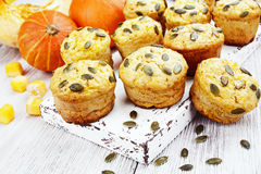 σπιτική muffins κολοκύθα Στοκ φωτογραφία με δικαίωμα ελεύθερης χρήσης