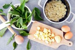 Σπιτική nettle σούπα Στοκ Εικόνες