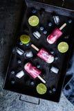 Σπιτικοί βακκίνιο, βατόμουρο και ασβέστης popsicles Στοκ Φωτογραφία