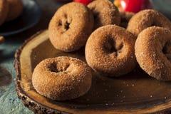 Σπιτικός γλυκαμένος μηλίτης Donuts της Apple στοκ φωτογραφίες