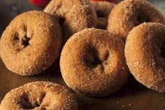 Σπιτικός γλυκαμένος μηλίτης Donuts της Apple Στοκ εικόνα με δικαίωμα ελεύθερης χρήσης