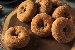 Σπιτικός γλυκαμένος μηλίτης Donuts της Apple Στοκ Εικόνες