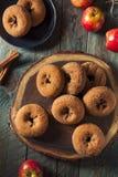 Σπιτικός γλυκαμένος μηλίτης Donuts της Apple στοκ φωτογραφία με δικαίωμα ελεύθερης χρήσης