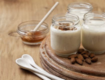 Σπιτικό γιαούρτι από το γάλα αμυγδάλων Στοκ Φωτογραφία