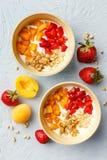 Σπιτικό γιαούρτι με τα καρύδια granola, βερίκοκων και πεύκων στοκ εικόνα