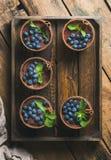Σπιτικό επιδόρπιο Tiramisu με την κανέλα, τα φύλλα μεντών και τα φρέσκα βακκίνια Στοκ εικόνες με δικαίωμα ελεύθερης χρήσης