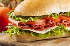 Σπιτικό ιταλικό υπο- σάντουιτς στοκ φωτογραφίες με δικαίωμα ελεύθερης χρήσης
