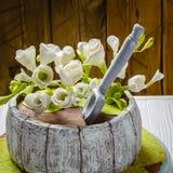 Σπιτικό κέικ με τα άσπρα λουλούδια Ξύλινη ανασκόπηση Στοκ Φωτογραφία