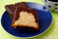Σπιτικό κέικ με το κακάο στοκ φωτογραφίες