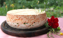 Σπιτικό καθαρό φυσικό τυρί αιγών Στοκ εικόνα με δικαίωμα ελεύθερης χρήσης