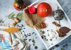 Σπιτικό κακάο με marshmallows, τα καρυκεύματα και την κολοκύθα, άνετη ζωή φθινοπώρου ακόμα, έννοια διάθεσης φθινοπώρου, εποχιακό  Στοκ εικόνες με δικαίωμα ελεύθερης χρήσης