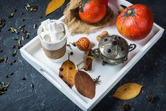 Σπιτικό κακάο με marshmallows, τα καρυκεύματα και την κολοκύθα, άνετη ζωή φθινοπώρου ακόμα, έννοια διάθεσης φθινοπώρου, εποχιακό  Στοκ Εικόνα