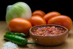Σπιτικό μεξικάνικο salsa Στοκ φωτογραφία με δικαίωμα ελεύθερης χρήσης