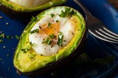 Σπιτικό οργανικό αυγό που ψήνεται στο αβοκάντο στοκ εικόνες