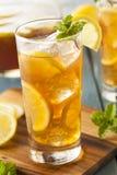 Σπιτικό παγωμένο τσάι με τα λεμόνια Στοκ εικόνες με δικαίωμα ελεύθερης χρήσης
