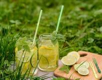 Σπιτικό ποτό λεμονιών και ασβέστη Η διαδικασία τη λεμονάδα υπαίθρια στοκ φωτογραφίες