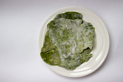 Σπιτικό πράσινο σπανάκι flatbread στοκ φωτογραφία με δικαίωμα ελεύθερης χρήσης