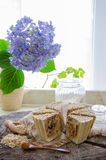 Σπιτικό σαπούνι βρωμών Στοκ εικόνα με δικαίωμα ελεύθερης χρήσης