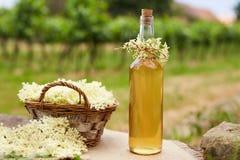 Σπιτικό σιρόπι elderflower σε ένα μπουκάλι στοκ εικόνες με δικαίωμα ελεύθερης χρήσης