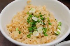 Σπιτικό τηγανισμένο σκόρδο ρύζι με το κρεμμύδι άνοιξη λαχανικών μιγμάτων Στοκ εικόνες με δικαίωμα ελεύθερης χρήσης